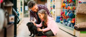 Por mês, gastos com pets ultrapassam R$150. Saiba como economizar